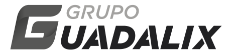 Grupo Guadalix | Logistics, Transport and Vehicle Custody